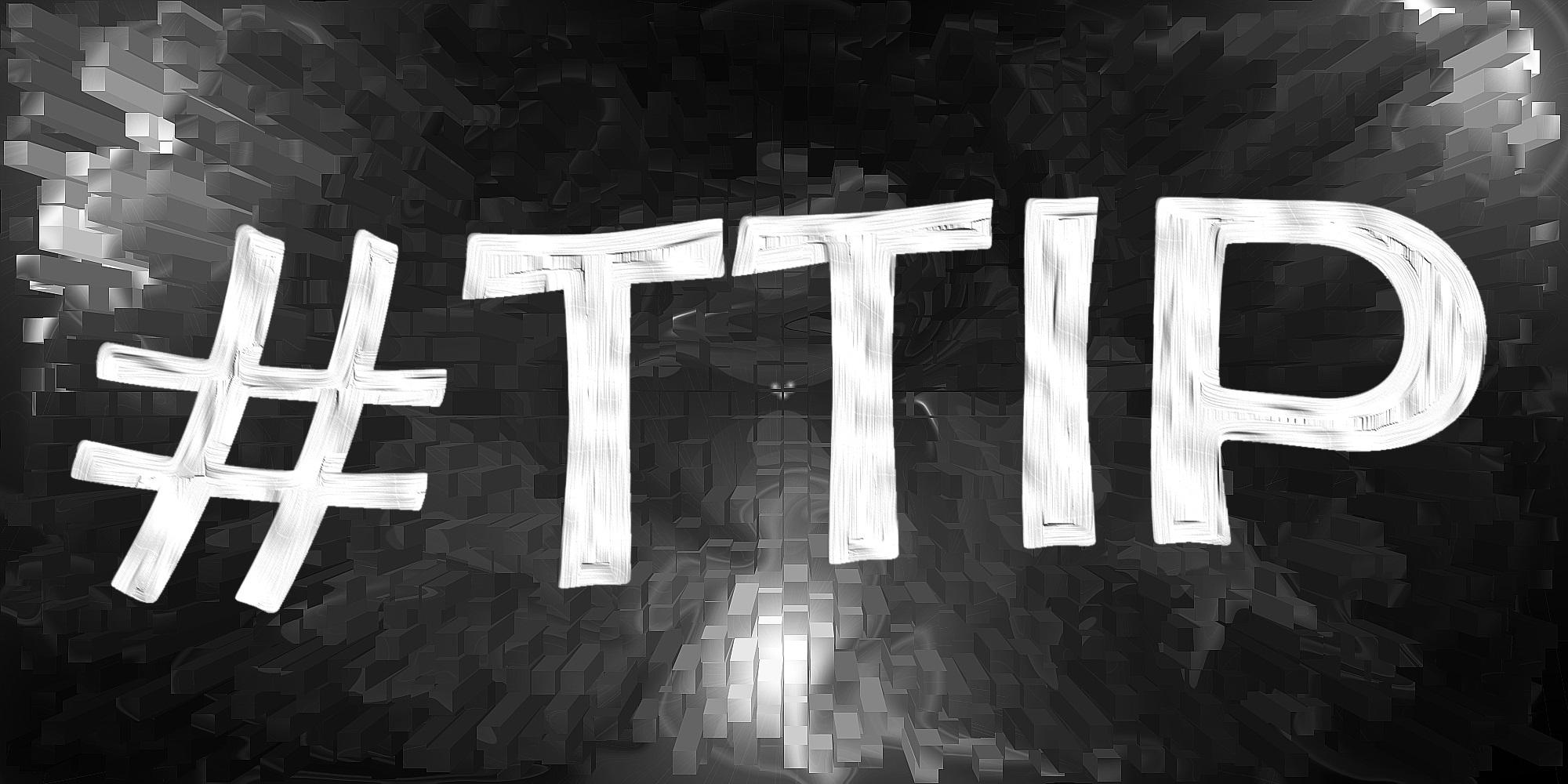 TTIP-Wirtschaft-Consulting